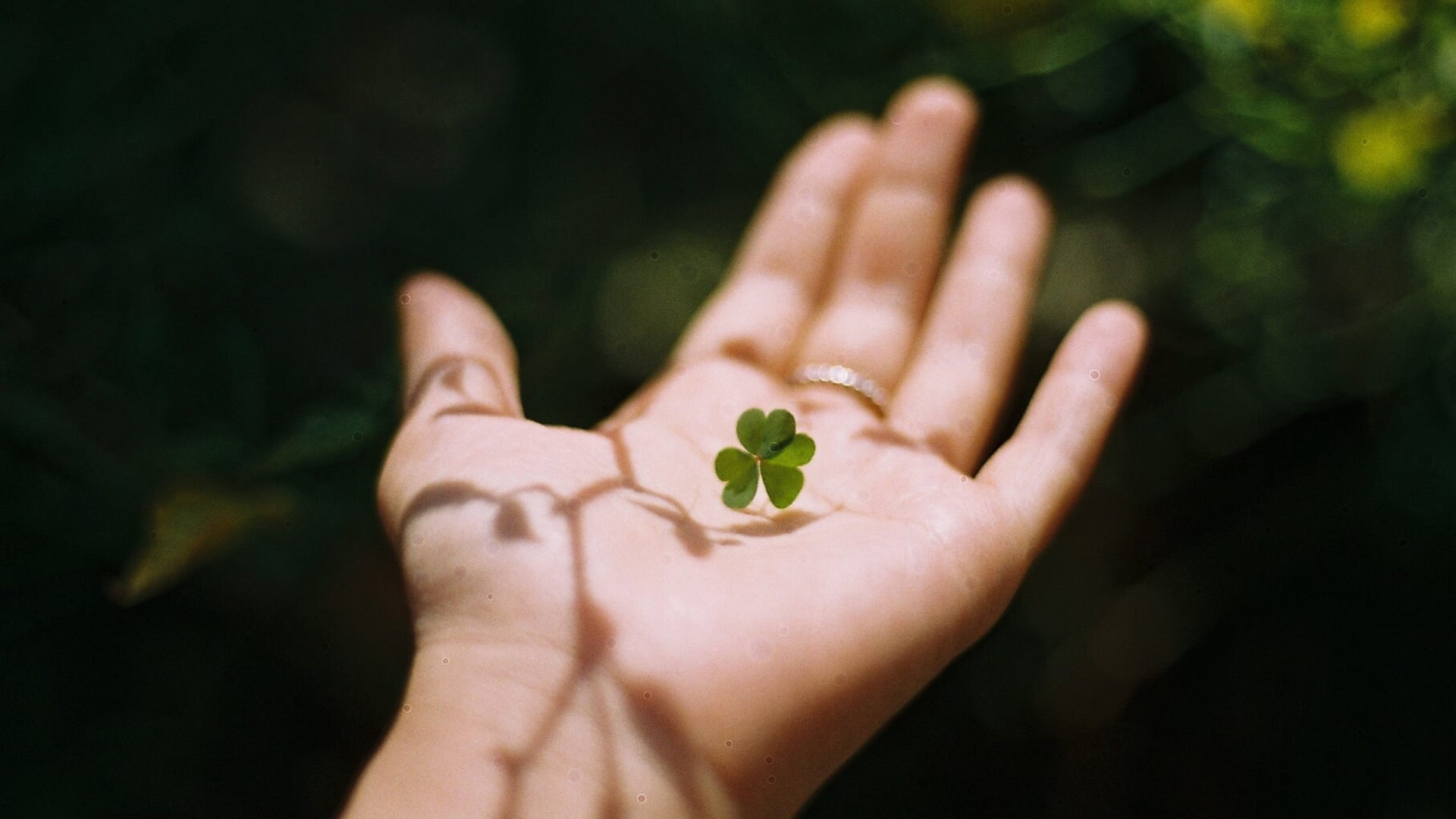31 Inspirational Quotes for March 2021 About Luck and Success