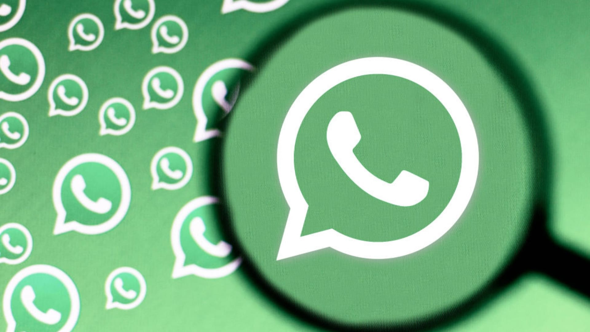 The CEO of WhatsApp Attacked Apple Over Privacy. He Seems to Have Forgotten He Works for Facebook