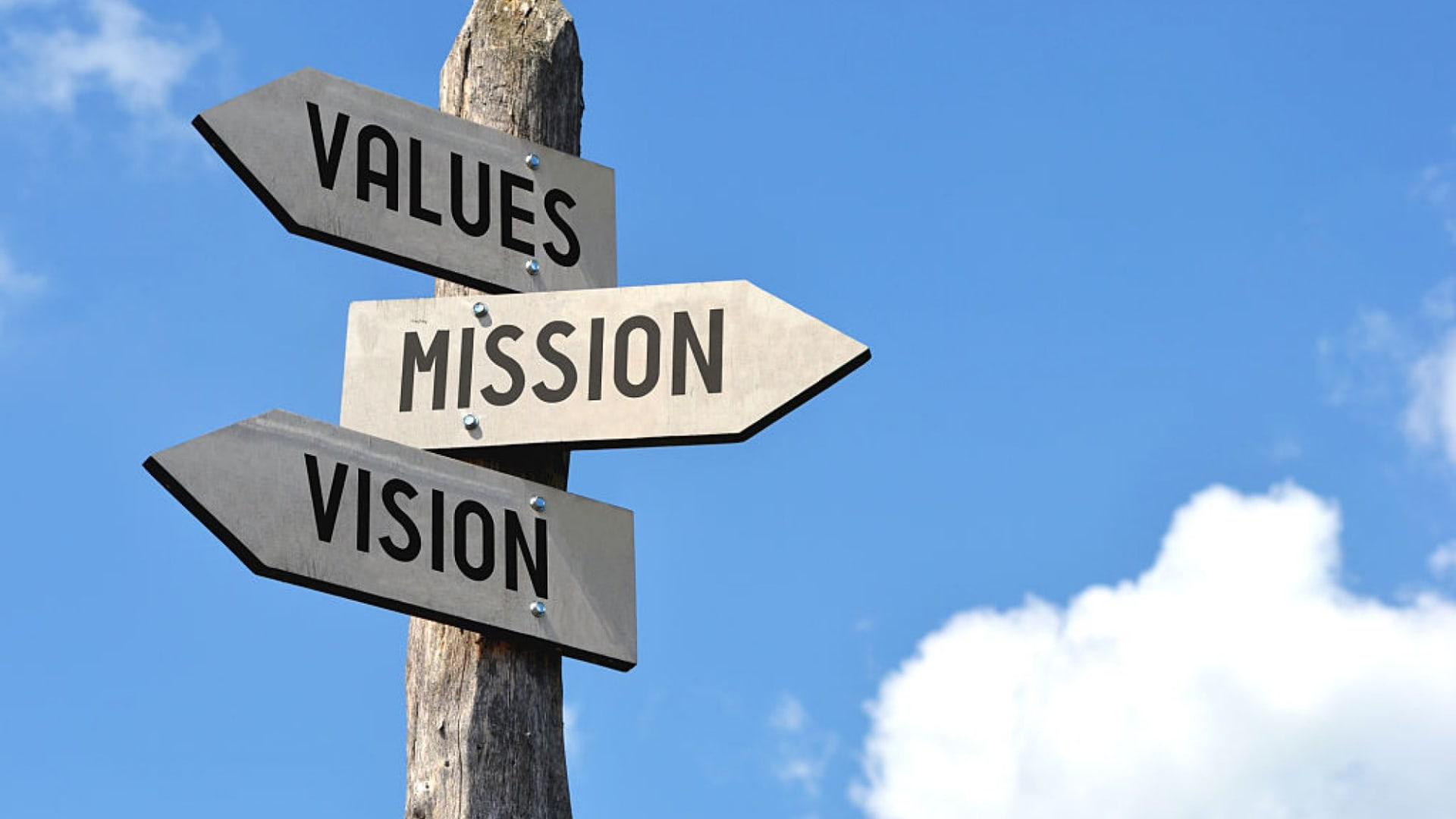 Leadership Lessons: Culture as a Driving Force
