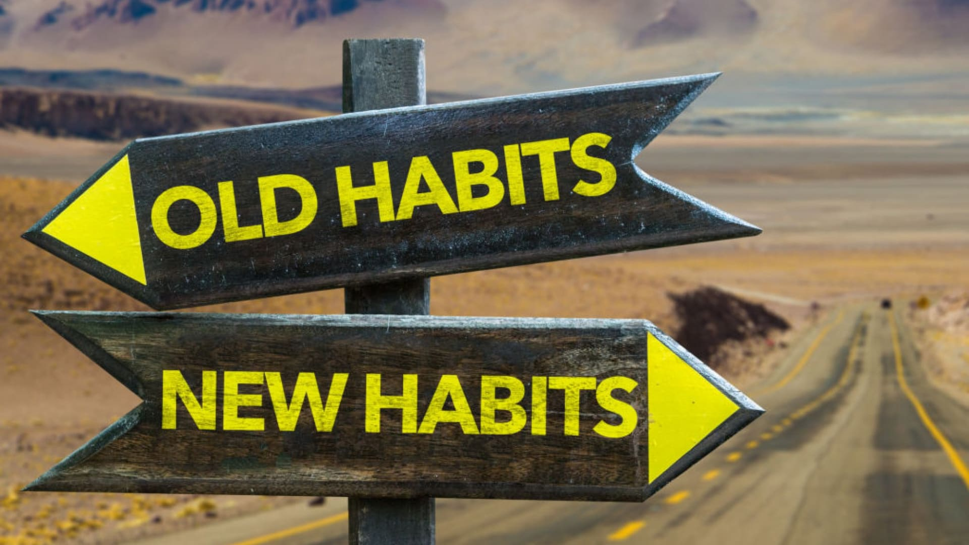 Inc. 5000 Company Leaders Share Habits That Empower Success