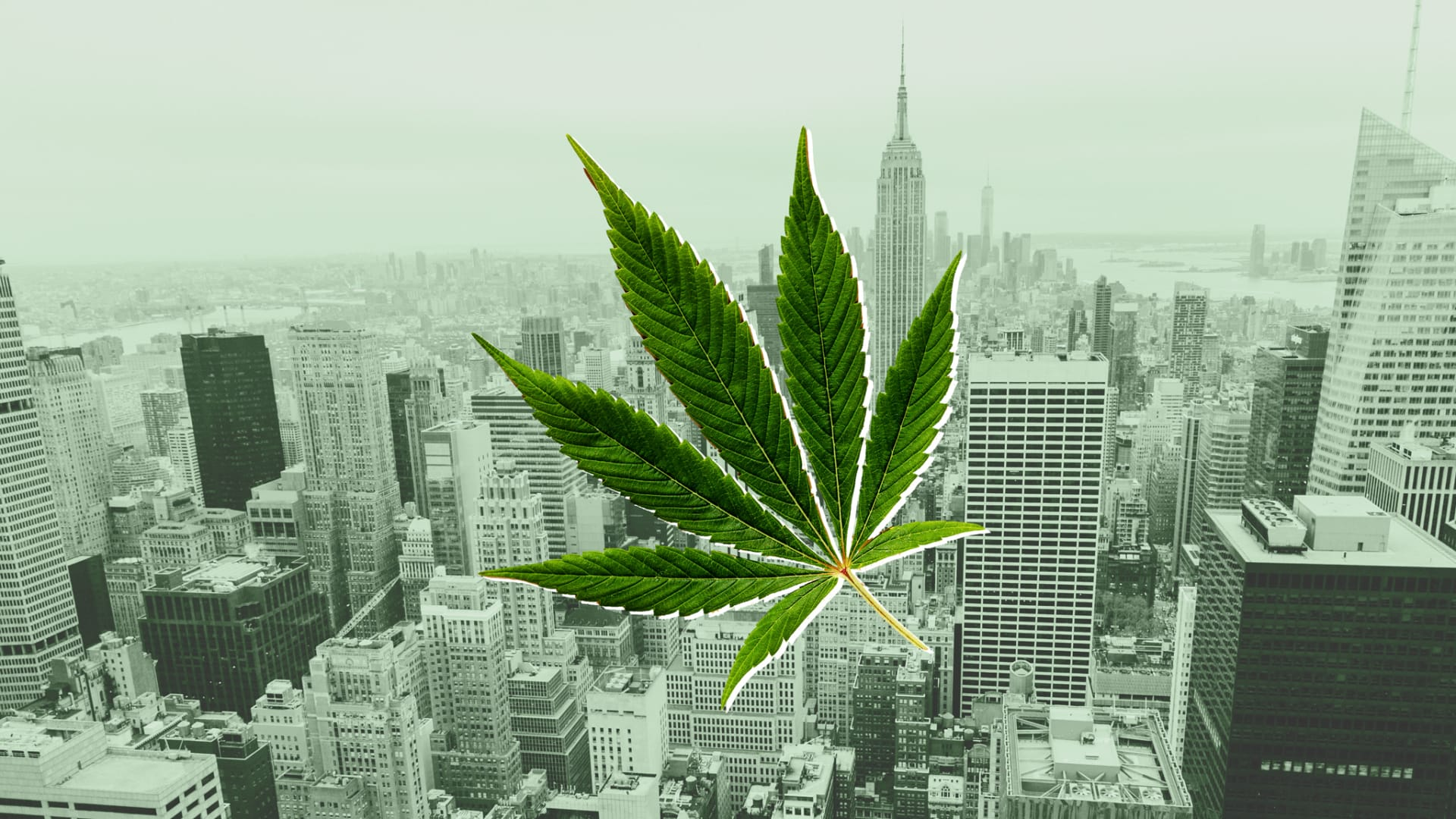 At $1 Billion Expected in Its First Year, New York's Legal Cannabis Market Means Business